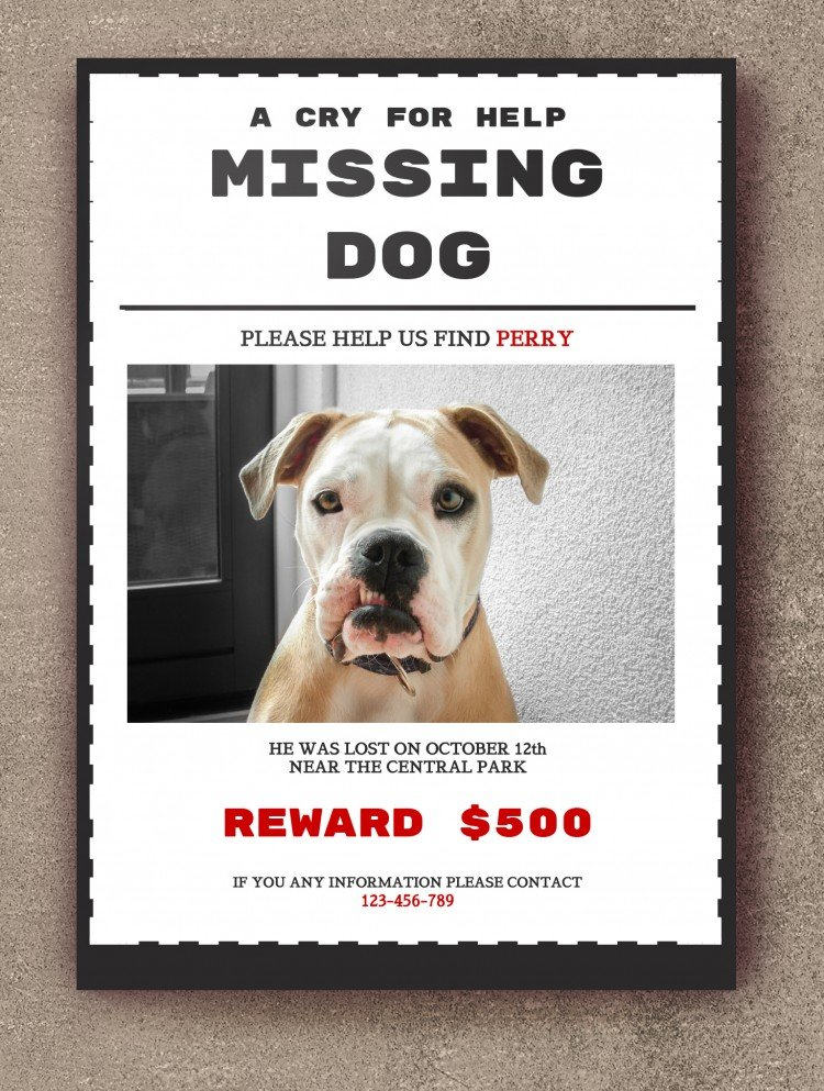 Free A Wanted Poster Template In Google Docs